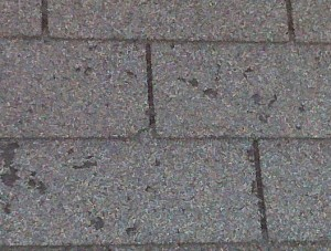 Wind Damaged Roofing Shingles Fireman Roofing